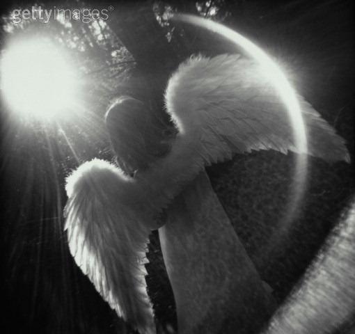 Ouvrir ses ailes et Voler.